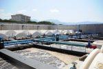 """Depurazione a Reggio, le buone pratiche affidate alla """"Mediterannea"""""""