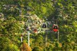 Il grande progetto di Forestazione urbana. La svolta di Messina per un'utopia concreta