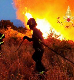 """Incendi, dal Cdm ok allo stato d'emergenza per Calabria, Sicilia, Sardegna e Molise"""""""