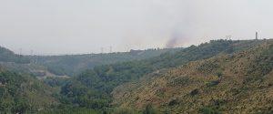 Gli incendi devastano i comuni del Pollino. 20 ettari di bosco in fumo ed un ferito