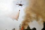 """""""La Castelluccia"""" in fiamme, al lavoro uomini e mezzi di Calabria Verde sul Tirreno cosentino"""
