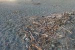 """Non solo mare inquinato, le spiagge a Lamezia sono """"indecorose"""""""