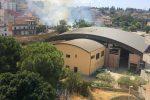 Reggio Calabria, parco San Giovanello brucia a causa dell'incuria