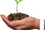 """Agricoltura, Zanoni """"Bene l'export bio, consumi interni da migliorare"""""""