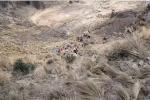 Bolivia, autobus precipita in un burrone. Almeno 23 i morti