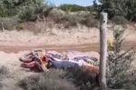 Motocross, paura nel Gp della Sardegna: brutta caduta di Cairoli VIDEO