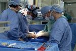 Ismett primo per uso di donatori di fegato in eccedenza da altre regioni