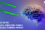 L'alfa-sinucleina stimola le cellule staminali neurali