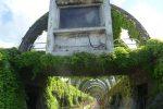 Nicotera Marina, un paradiso verde da sottrarre alle cosche