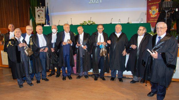 avvocati, palmi, Calabria, Cronaca