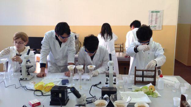 laboratori scuole, potenziamento, reggio calabria, Reggio, Cronaca