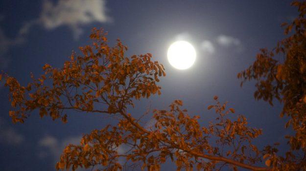 equinozio d'autunno, estate, luna, Sicilia, Società