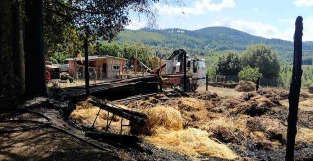 azienda agricola, incendio, vallelonga, Catanzaro, Cronaca