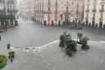 """Maltempo in Calabria e Sicilia, Coldiretti: """"In tre giorni 20 bombe d'acqua"""""""