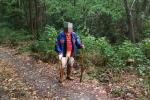 Disperso mentre andava a caccia di funghi, 80enne salvato tra i boschi di Celico