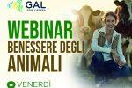 """""""Il benessere degli animali"""", webinar del Gal """"Terre Vibonesi"""" e la """"Mediterranea"""""""