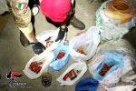 Fucile e munizioni in mezzo agli attrezzi, denunciato 54enne a Molochio FOTO