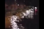 """Bomba d'acqua """"affonda"""" Mondello, strade allagate e frane in tutta Palermo VIDEO"""