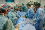 A New York primo trapianto sull'uomo di un rene di maiale modificato