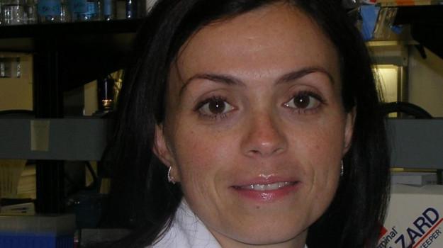 mieloma, Paola Neri, Calabria, Cronaca