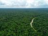 Pirelli e Bmw con Birdlife International per tutelare l'ecosistema in Indonesia