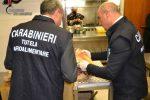 """Pizzerie """"stellate"""" con prodotti surgelati e marchi falsi, sequestri e sanzioni anche a Messina"""