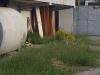 """Impianto sportivo """"Curto"""" a Catanzaro Lido. L'associazione I Quartieri """"striglia"""" Abramo"""