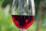 Veneto, 13 mln per la promozione del vino sui mercati extra Ue
