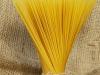 """World Pasta Day, Giansanti """"Più grano nazionale e di qualità"""""""